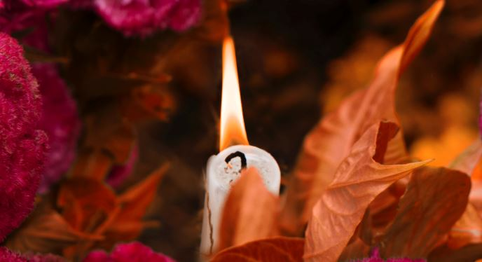 cremation service in Gilbert, AZ
